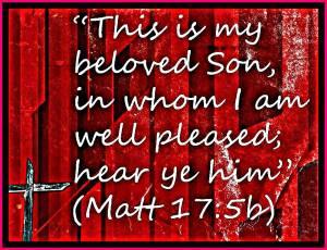 Beloved Son.2
