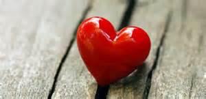 Anatomy of a Servant's Heart
